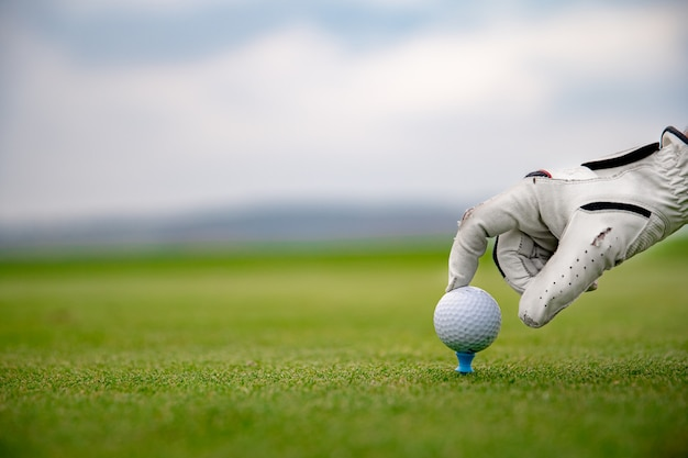 A golf player prepares a golf ball on a green course Premium Photo