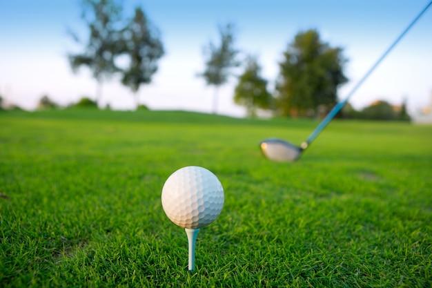Golf tee ball club driver in green grass course Premium Photo