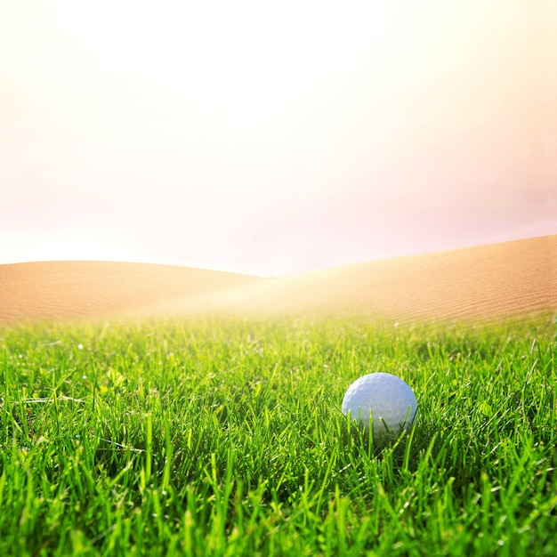 Golfball on the golf course. Free Photo