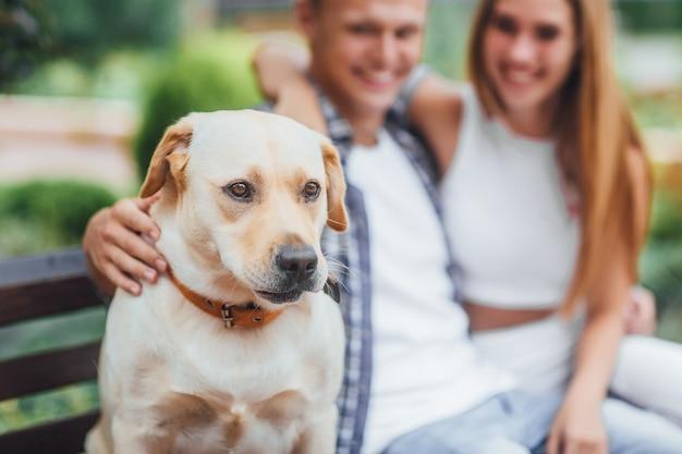 Хороший мальчик! красивая пара, отдыхая на скамейке с собакой. молодая семья гладит лабрадора. сосредоточьтесь на собаке. Premium Фотографии