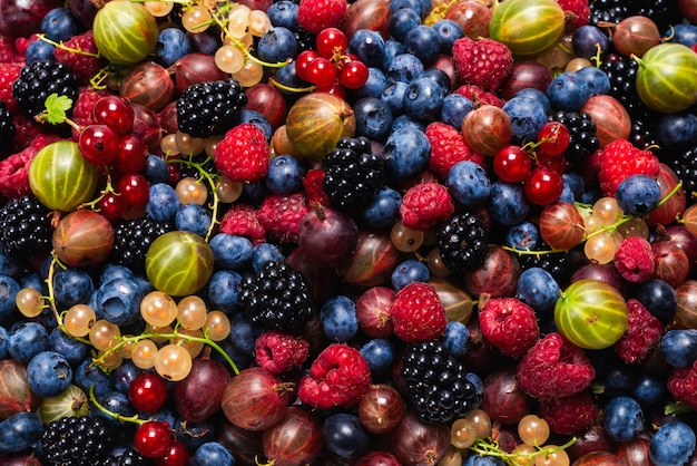 Gooseberries, blueberries, mulberry, raspberries, white and red currants. Premium Photo