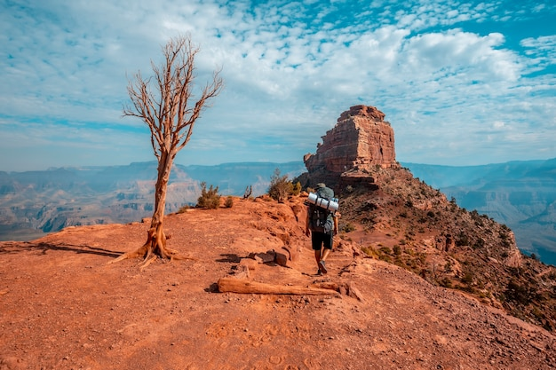 Grand canyon, arizona  united states  august 2019 south kaibab trailhead, a young man loaded with the backpack descending on the trekking. Premium Photo