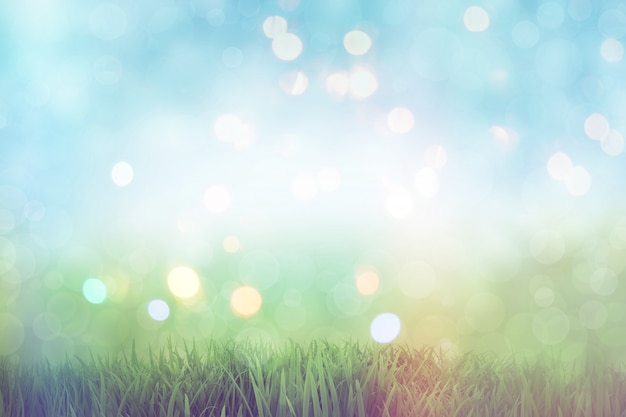 Grass bokeh Free Photo