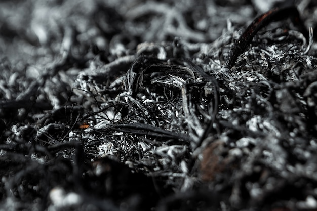 Gray background ashes, burned plants, abstract texture of coals and ashes Premium Photo