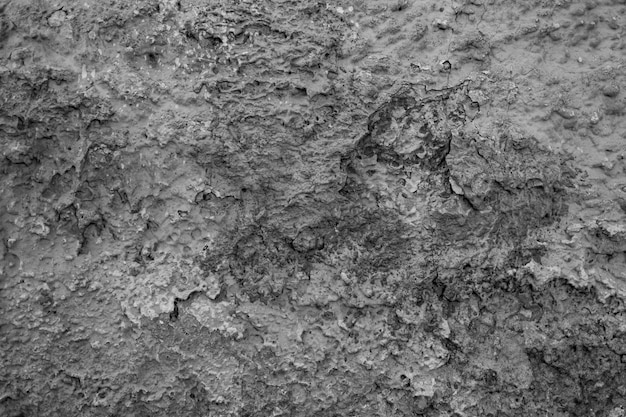 Priorità bassa di struttura del vecchio muro di cemento grigio Foto Gratuite