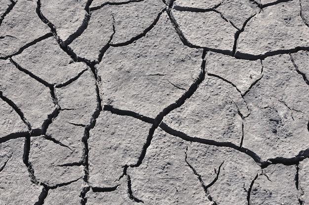 Gray cracked soil Premium Photo