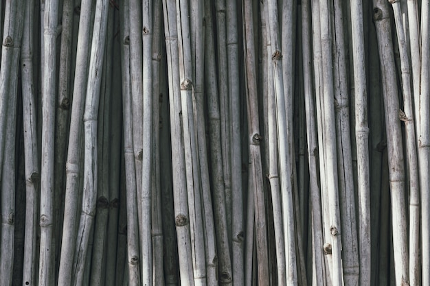 Gray dry bamboo  that is arranged vertically. Free Photo