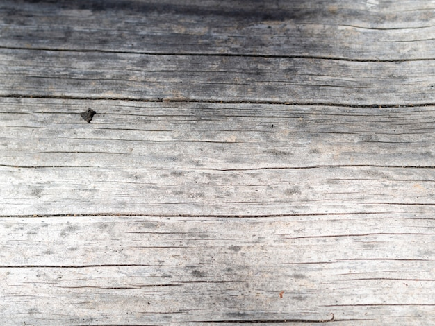 Gray shabby wooden background Free Photo