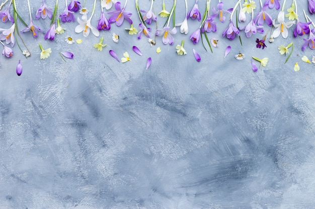 Gray and white textured background with purple and white spring flowers border Free Photo