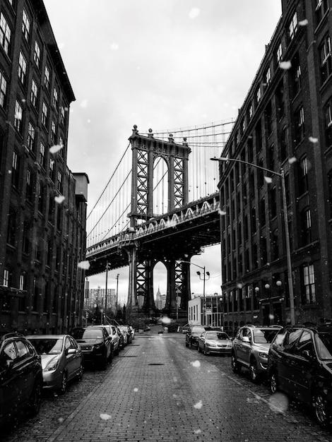 ブルックリン橋のグレースケール写真 無料写真
