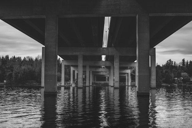 Grayscale shot from below of the bridge over the water in seattle wa Free Photo