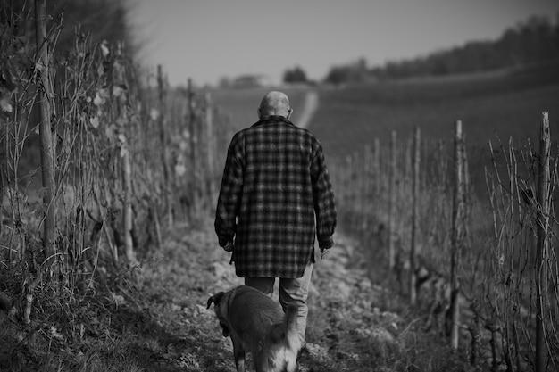 Scatto in scala di grigi di un maschio con un cane che cammina attraverso un sentiero in un campo durante il giorno Foto Gratuite