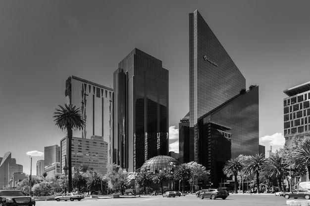 近代的な高層ビルと熱帯の木々のグレースケールショット 無料写真