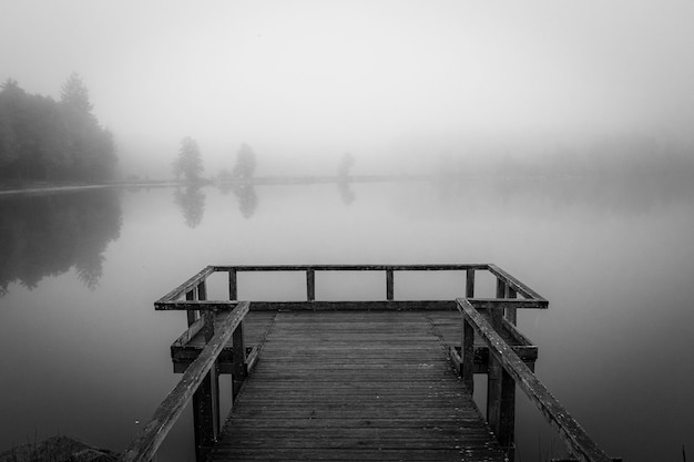Grayscale shot of a wooden dock near the sea surrounded by trees covered with fog Free Photo