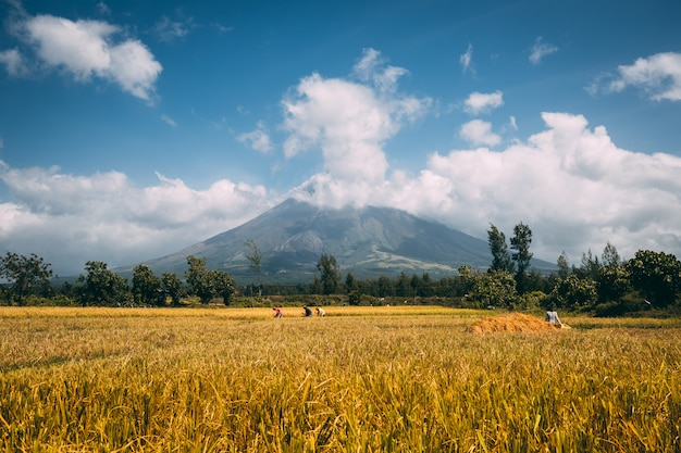 Great mayon volcano on luzon island philippines Premium Photo