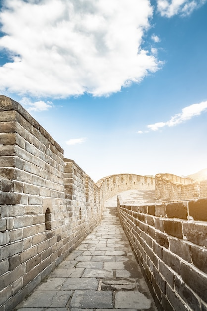 The great wall Free Photo
