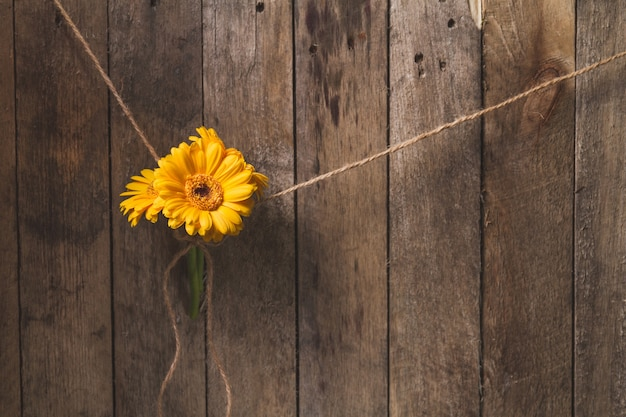 Great Wooden Background With Yellow Flowers Tied Free Photo