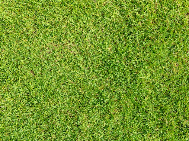 Green artificial grass natural background Premium Photo