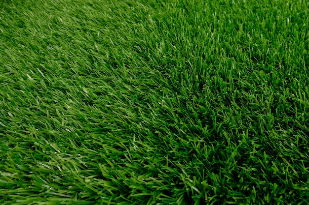 Green artificial grass top view. floor covering. background, copy space. Premium Photo