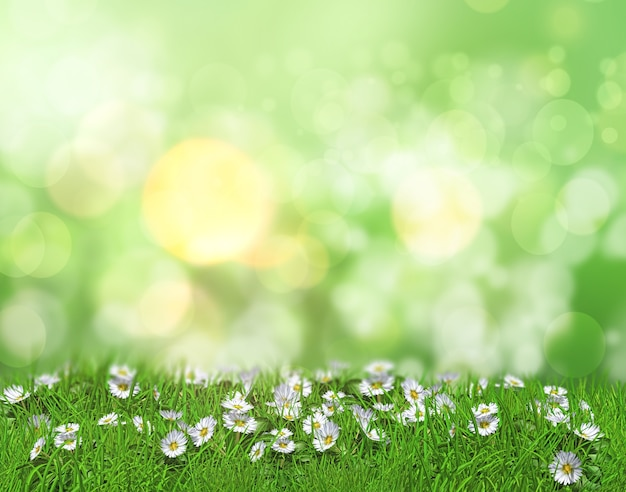 Green background Photo Free Download