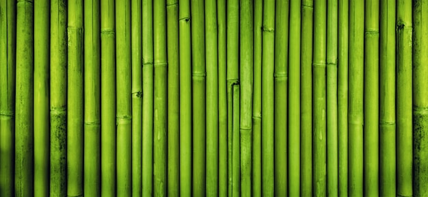 ornamental bamboo fence.htm green bamboo fence texture  bamboo background premium photo  green bamboo fence texture  bamboo