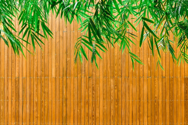 Green bamboo leaves and wooden plates Premium Photo