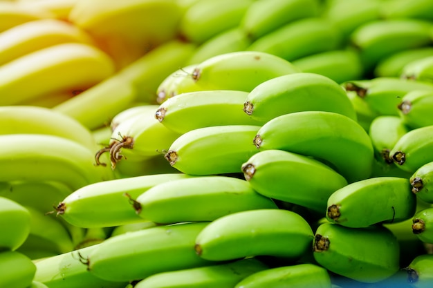 Green banana bunch Premium Photo