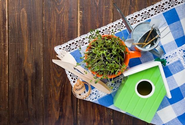 Зеленый скворечник, ростки мини-зеленого в оранжевой чашке и бамбуковая вилка, разлагаемая бамбуком, и нож из натурального экологически чистого материала многократного использования Premium Фотографии