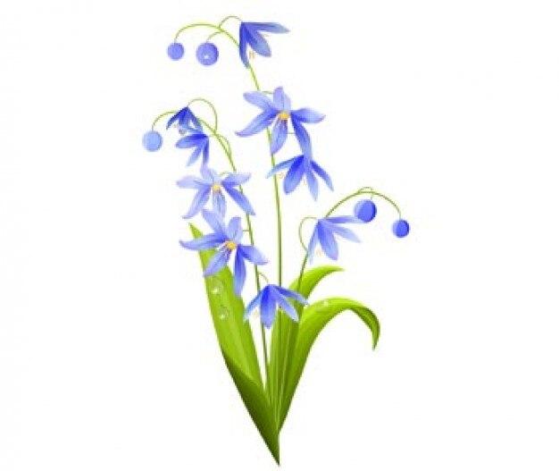 Green-Blue Spring Flowers