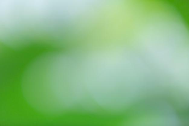 Green bokeh on nature blur. element of design. Free Photo