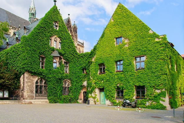 Green building covered with plants in germany Premium Photo