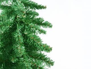 green christmas border