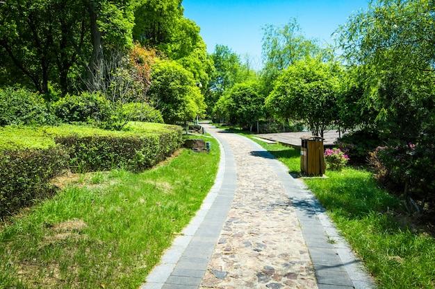 Parco della città verde Foto Gratuite