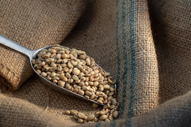 Green coffee bean raw in sack with scoop Premium Photo