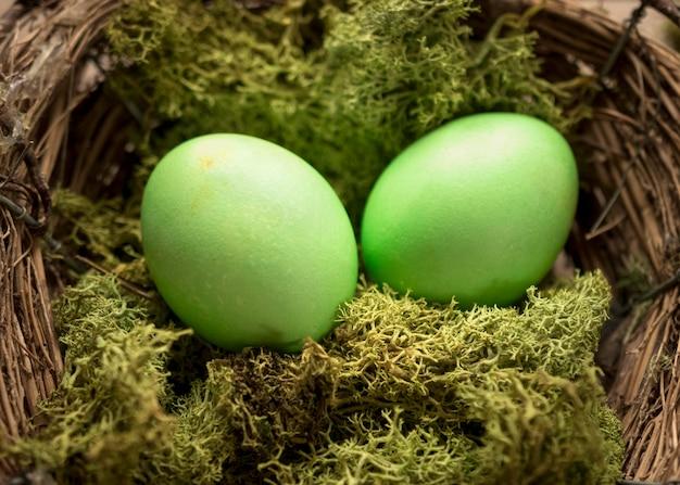 緑色のイースターエッグと草 無料写真