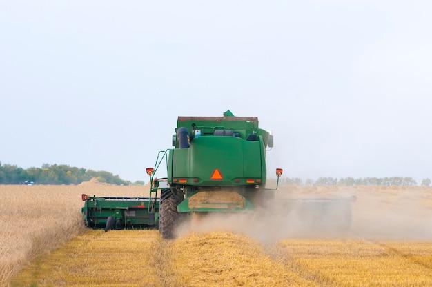 Зеленый комбайн убирает пшеницу с поля, вид сзади крупным планом Premium Фотографии