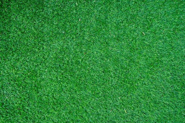 Green decoration artificial grass use for sport background. Premium Photo