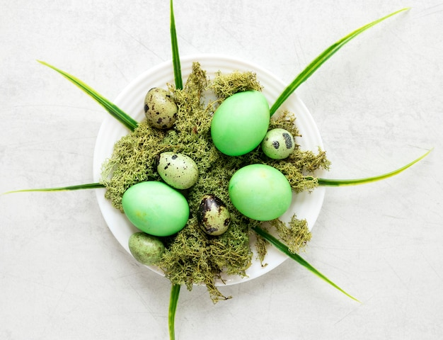 녹색 부활절 닭고기와 메추라기 알 무료 사진