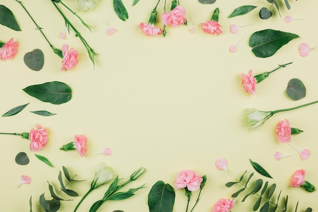 Green eucalyptus populus leaves; pink carnations and eustoma flowers with space in the center on yellow background Free Photo