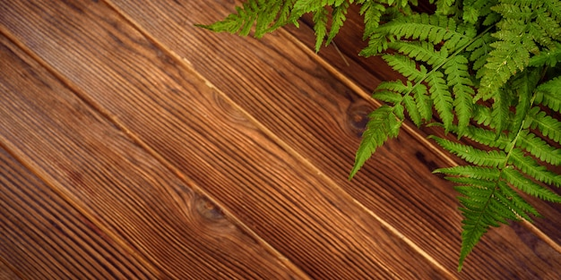 Green fern leaves on brown oak wood background with copy space Premium Photo