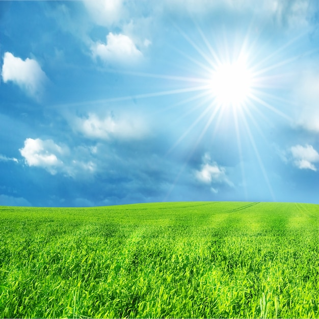 green field with a sunny day photo free download Free Smiley Clip Art free sunshine clipart images