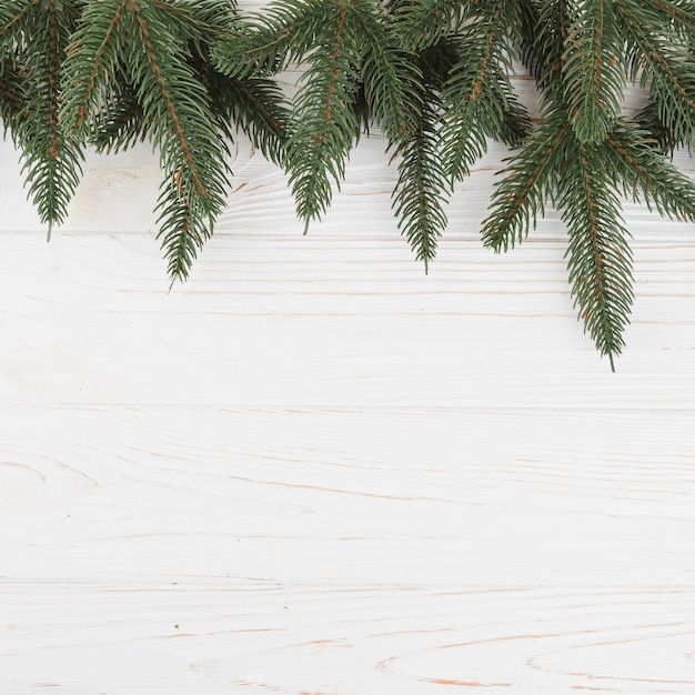 Green fir tree branches on table Free Photo