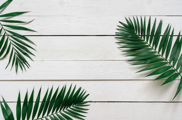 Зеленая квартира заложить тропических пальмовых листьев ветви на фоне белой деревянной доски. комната для текста, копирования, надписи. Premium Фотографии