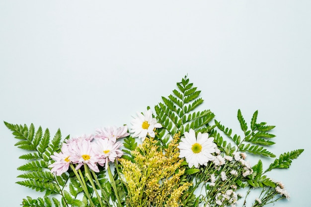 Green floral composition on light blue background Free Photo