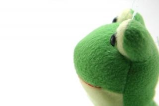 Green fluffy toy, color Free Photo