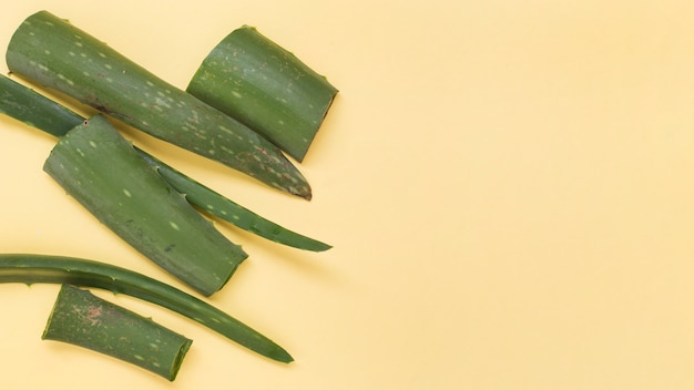 Green fresh slices of aloe vera on yellow background Free Photo