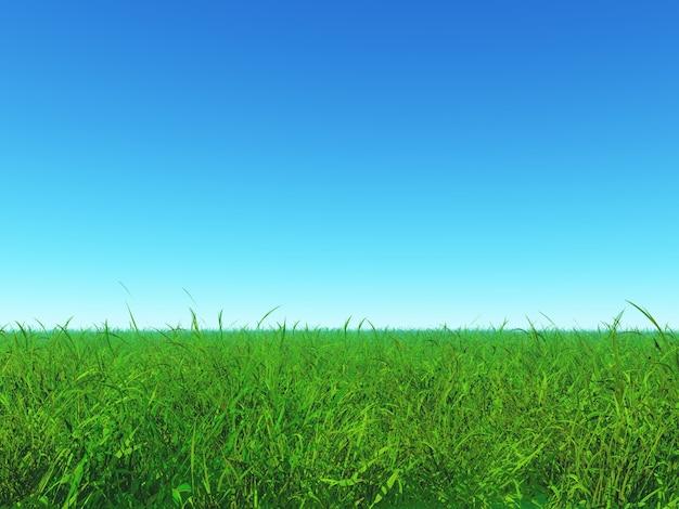 green grass blue sky. Perfect Green Green Grass And Blue Sky Free Photo Throughout Grass Blue Sky K