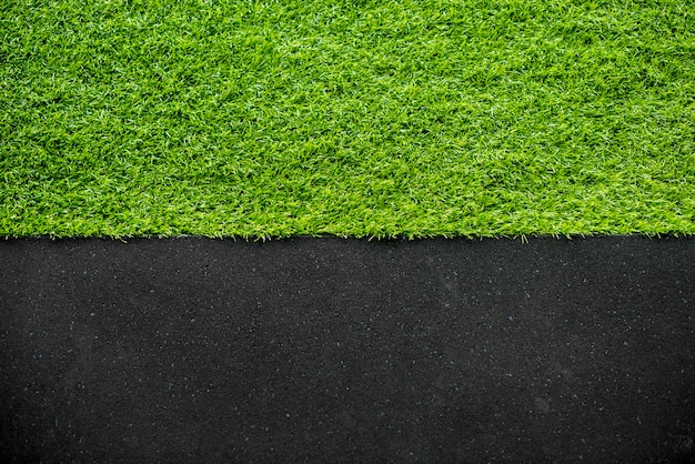 Green grass background Free Photo