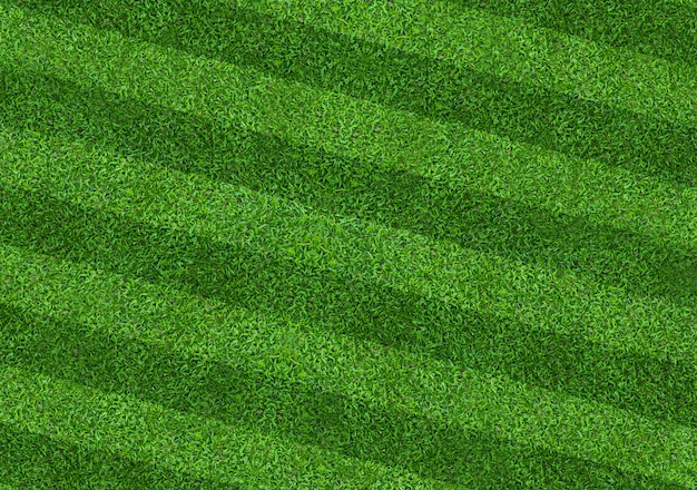 Green grass field background for soccer and football sports. green lawn pattern and texture background. close-up. Premium Photo