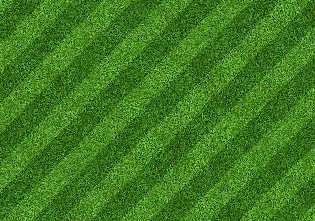 Green grass field background for soccer and football sports. green lawn texture background. close-up. Premium Photo